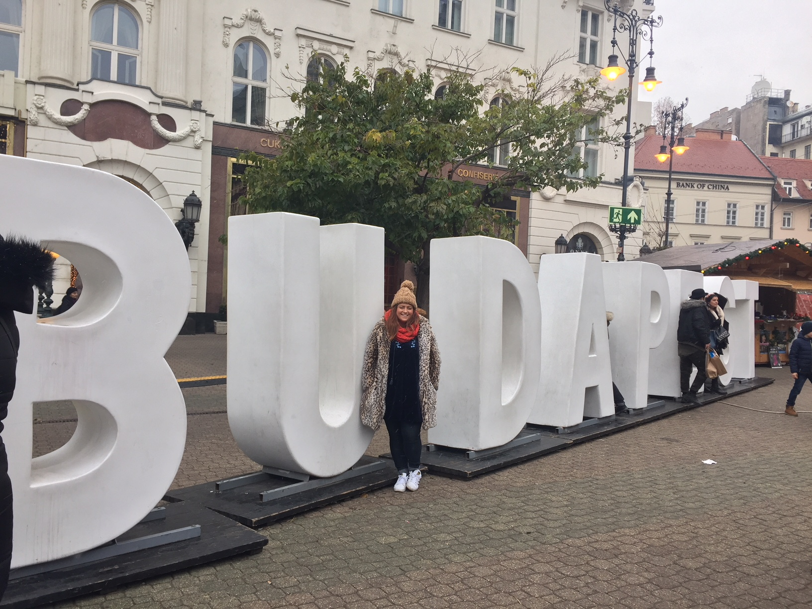 A Winter Weekend in Budapest, Hungary