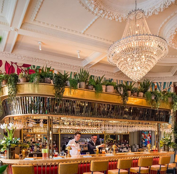 Review: The Ivy Brasserie, Norwich