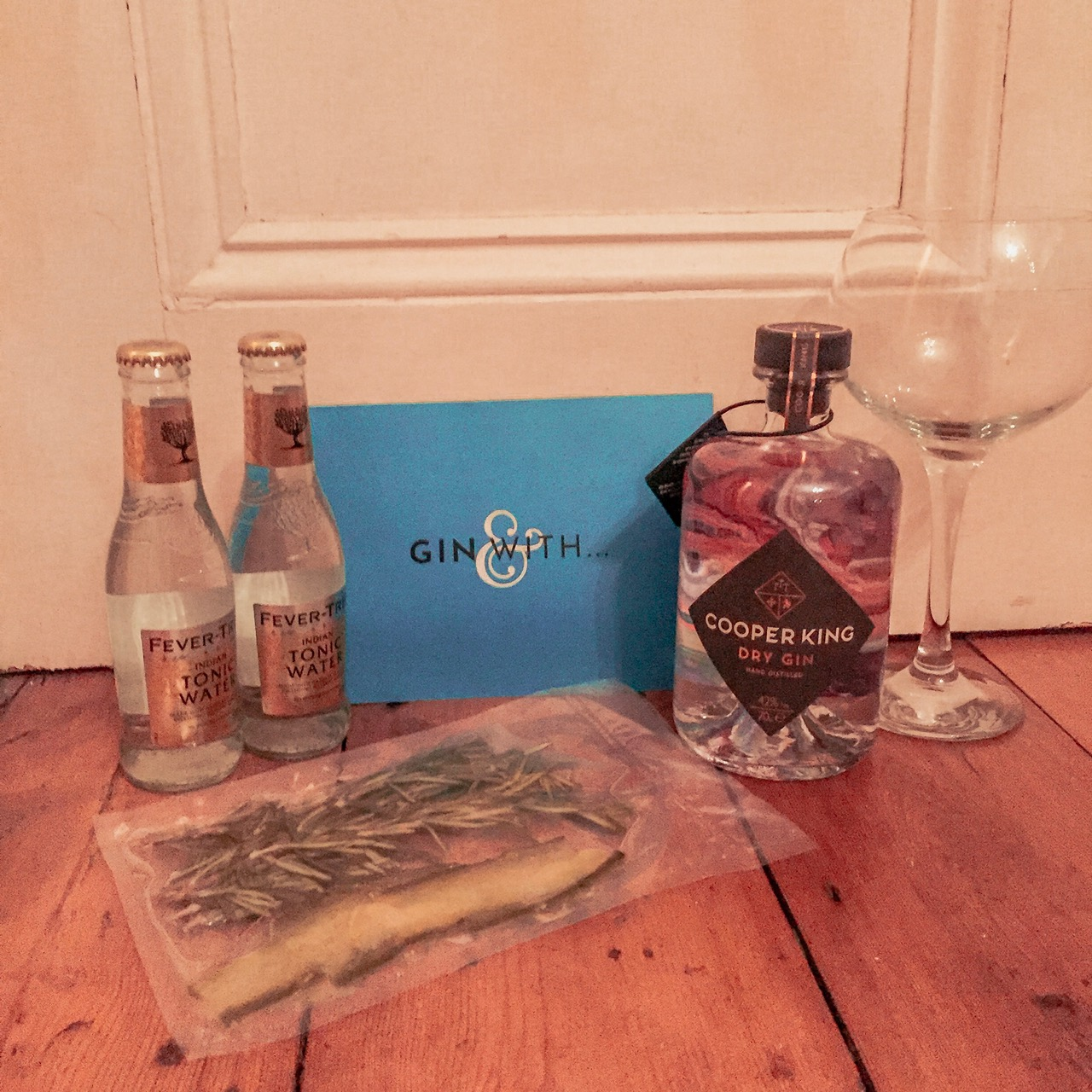 What Cocktail to Make for a Night With the Girls – Gin With