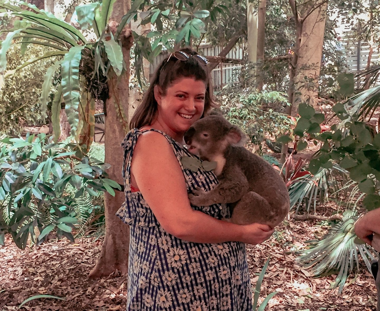 The Oz Blog – Lone Pine Koala Sanctuary, Brisbane
